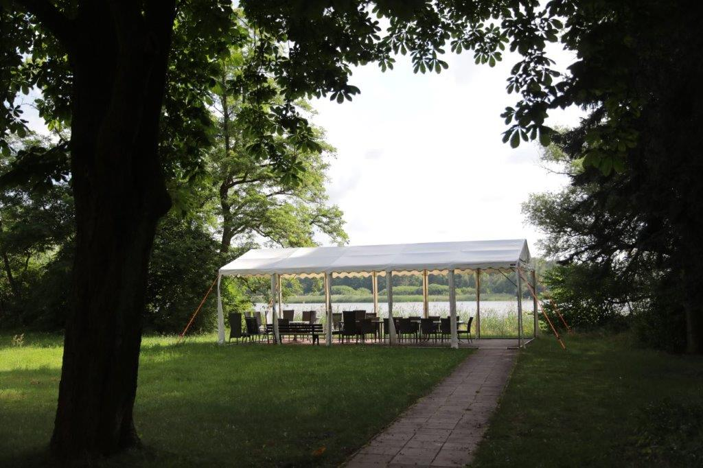 Blick durch Bäume auf eine Terrasse und einen See