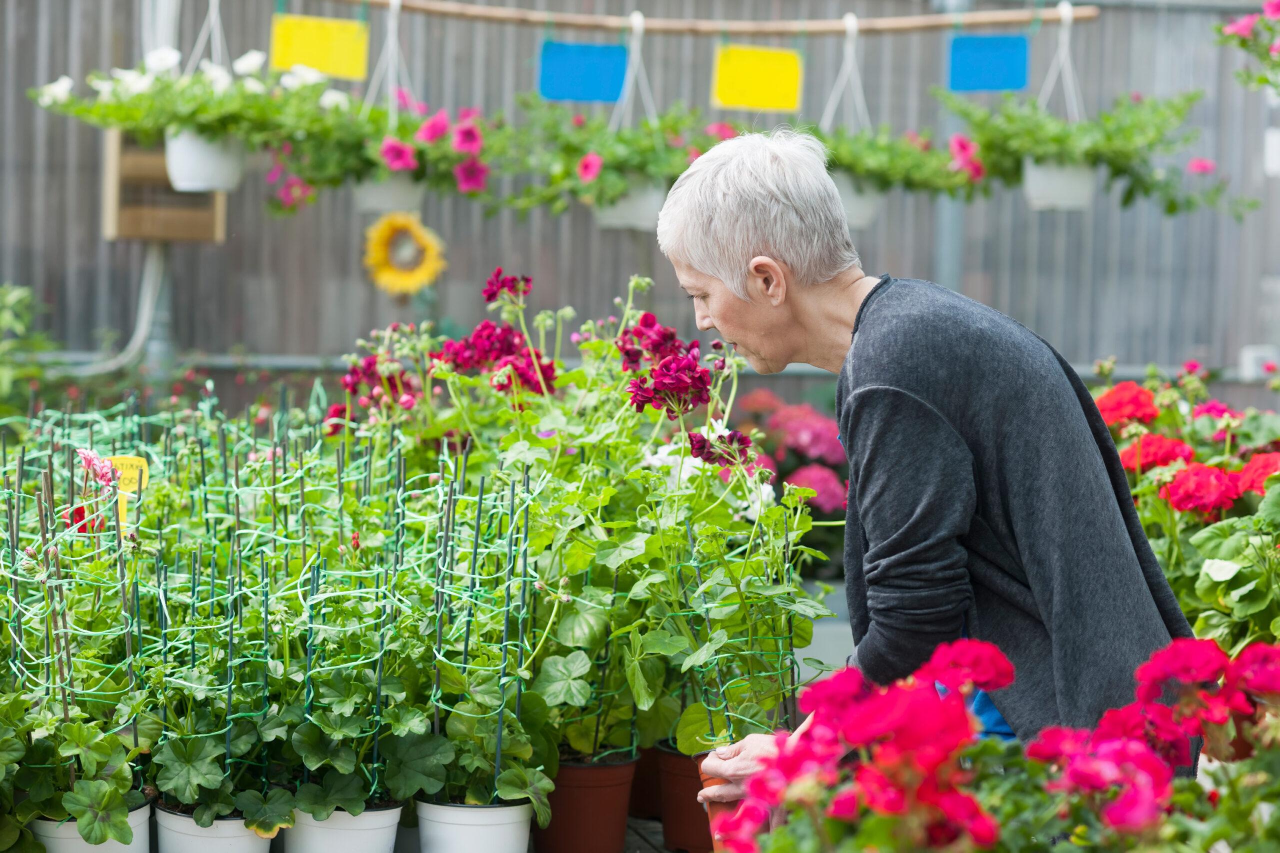 Frau kümmert sich um Blumen