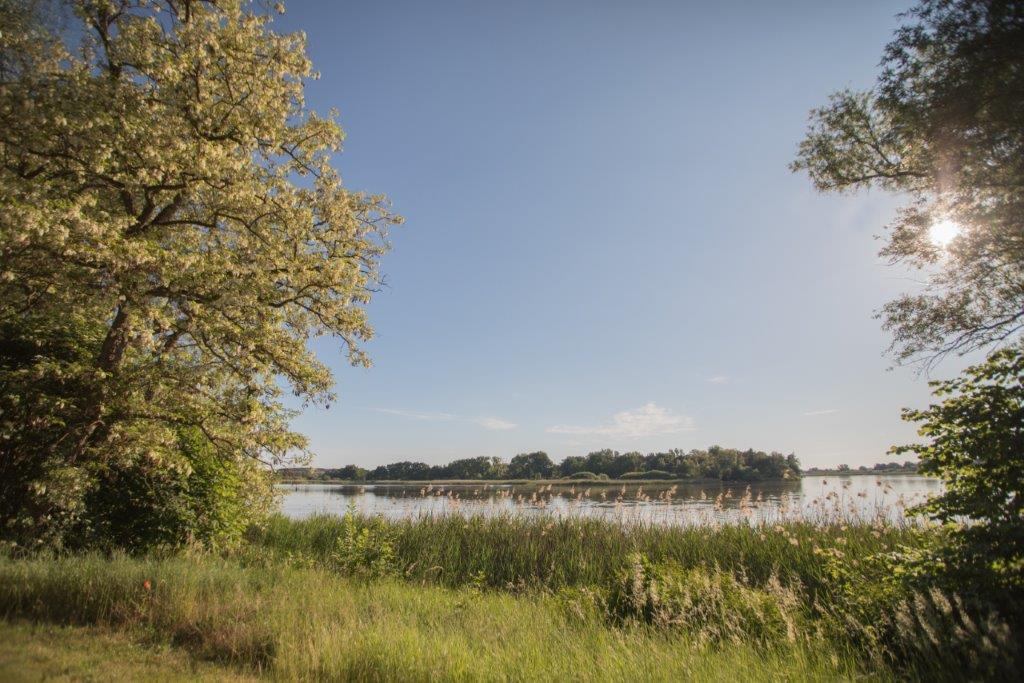 Blick auf den Beetzsee am Lindenhof