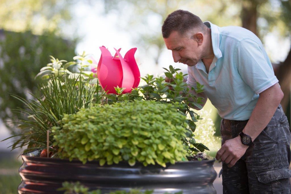 Mann schnuppert an Kräutern im Hochbeet auf dem Lindenhof